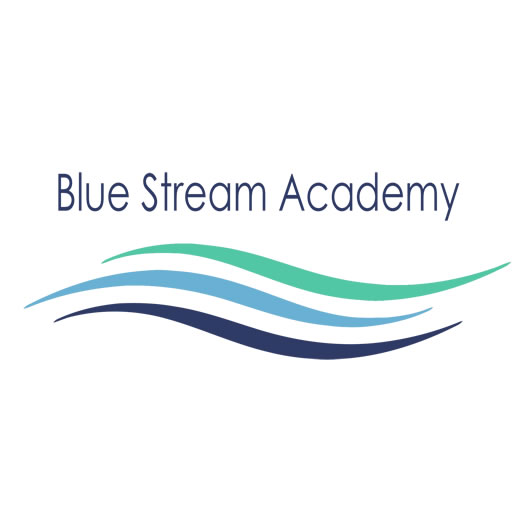 blue_stream_academy_elearning_site_icon